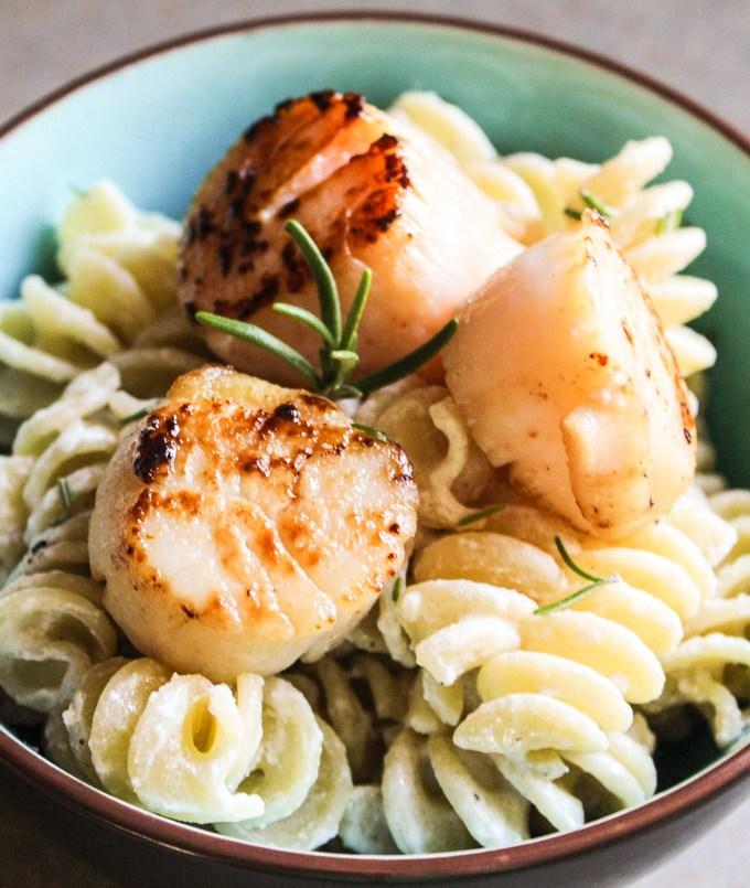 Pasta in a Goat Cheese Sauce with Pan-Seared Scallops