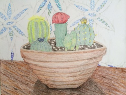 8 x 10 colored pencil on card stock