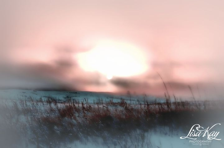 winterfog2