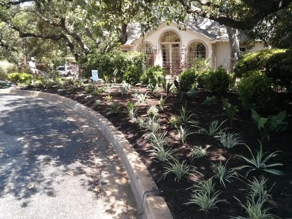 Plants go strait into your beds, properly spaced no fuss, no guessing. Use my 20+ years of experience in the Central Texas landscape to save you time and money.