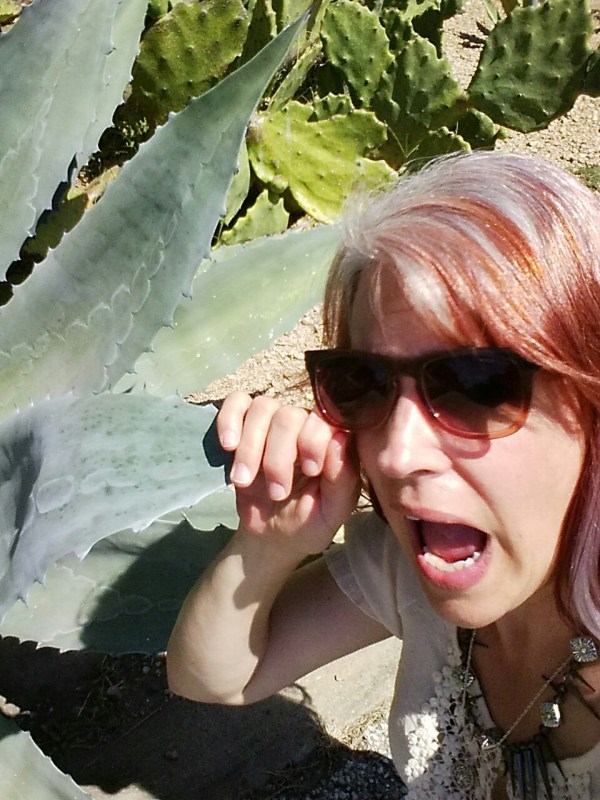 Don't plant your Agave so close to the street, You're going to poke someones eye out!