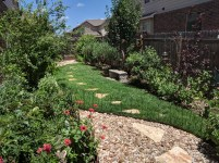 Be sure to fence off your new lawn for the first couple of weeks until established to avoid root damage, or pet damage.