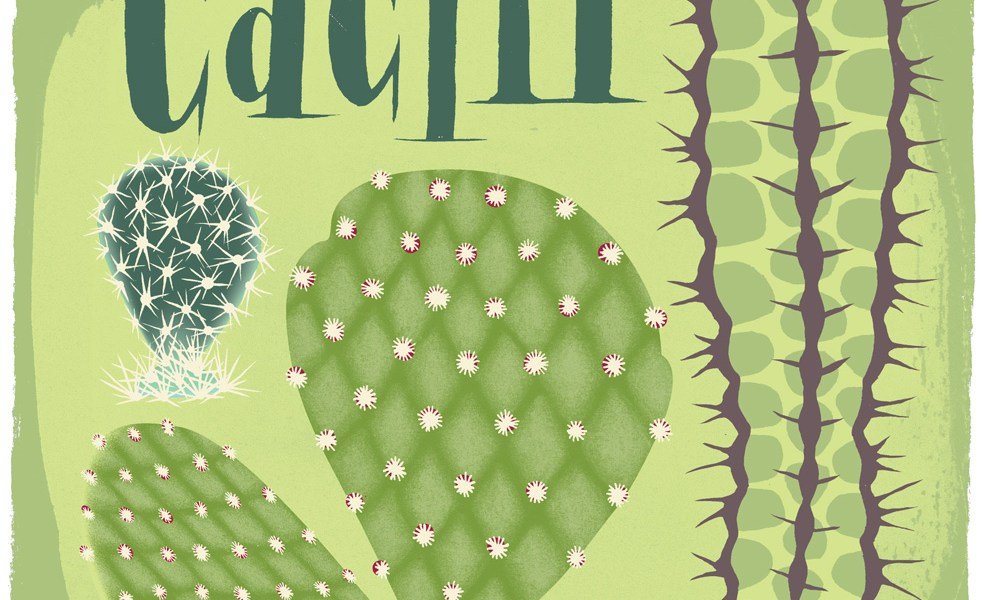 New Cactus Wall Hanging (in the works)
