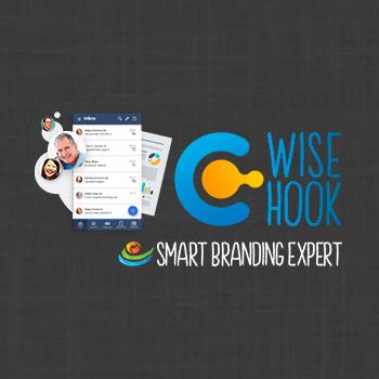 smart-branding-expert-wisehook