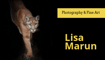 Lisa Marun