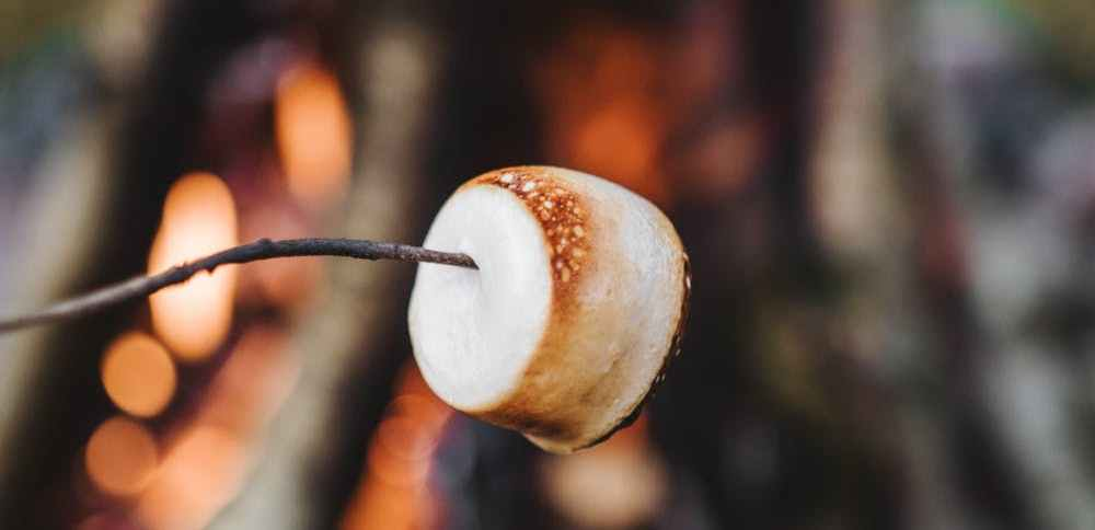 roasting marshmallow over campfire
