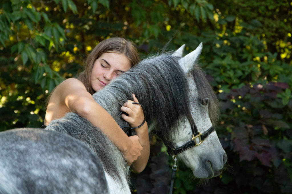 Equine portraits in wellington, pony hugs