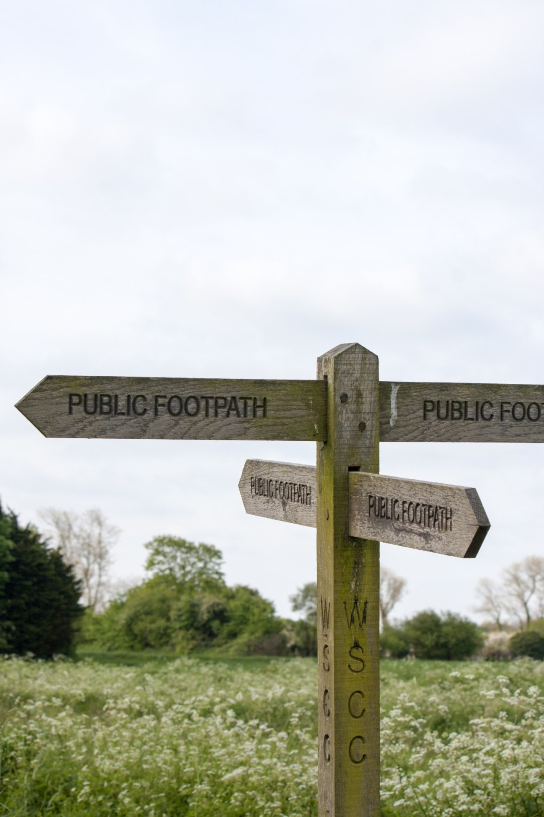 Pathways_Signpost_Lisa_Rothwell_Young