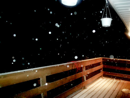 Wisconsin Snow!