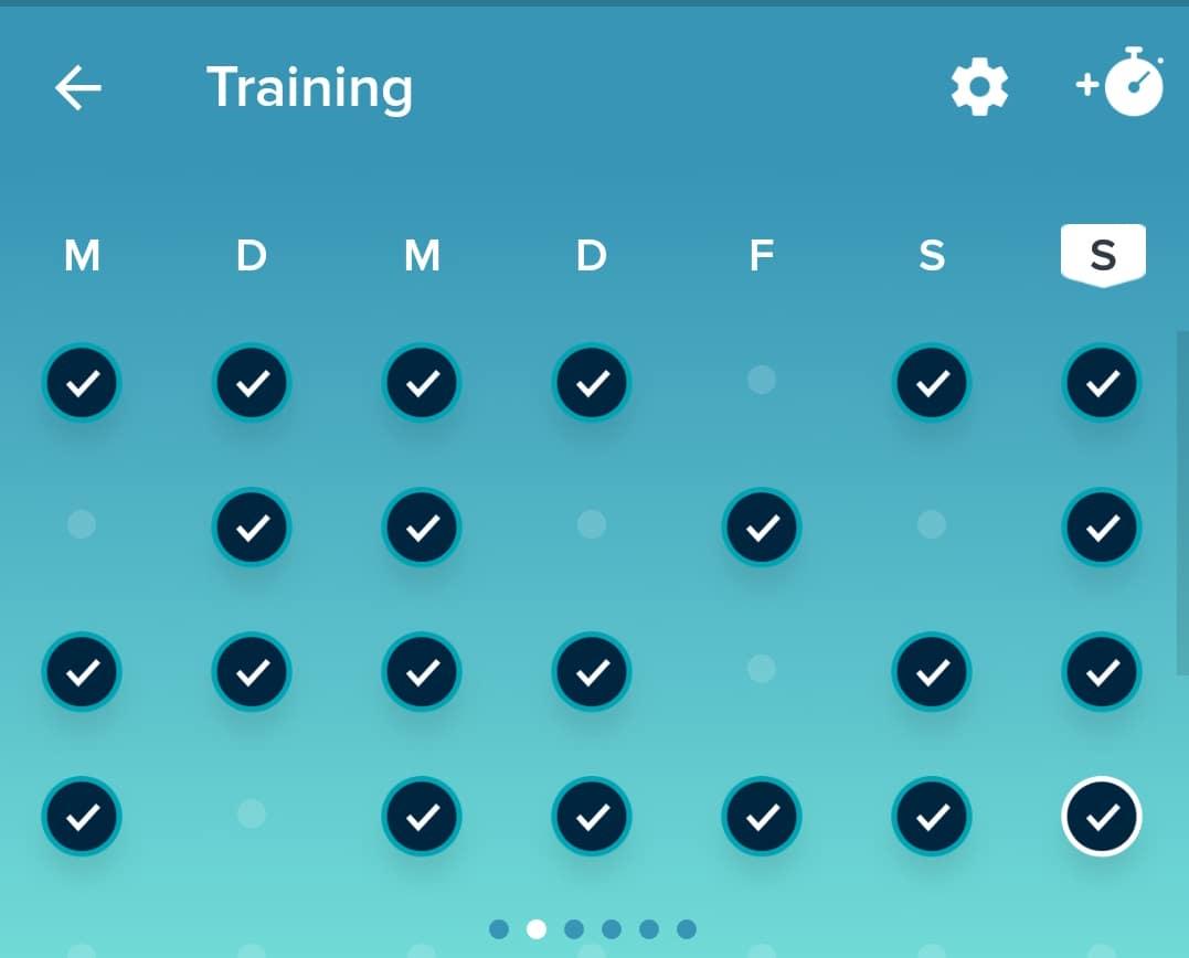 training_fitbit_sport_abnehmen