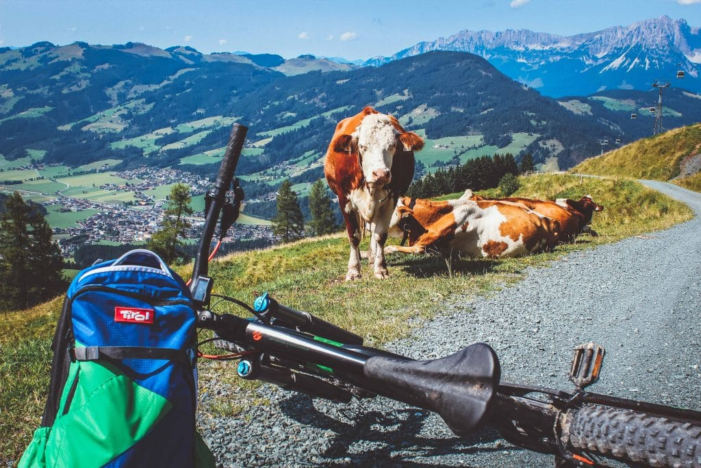 Xiaomi Fotowettbewerb Österreich
