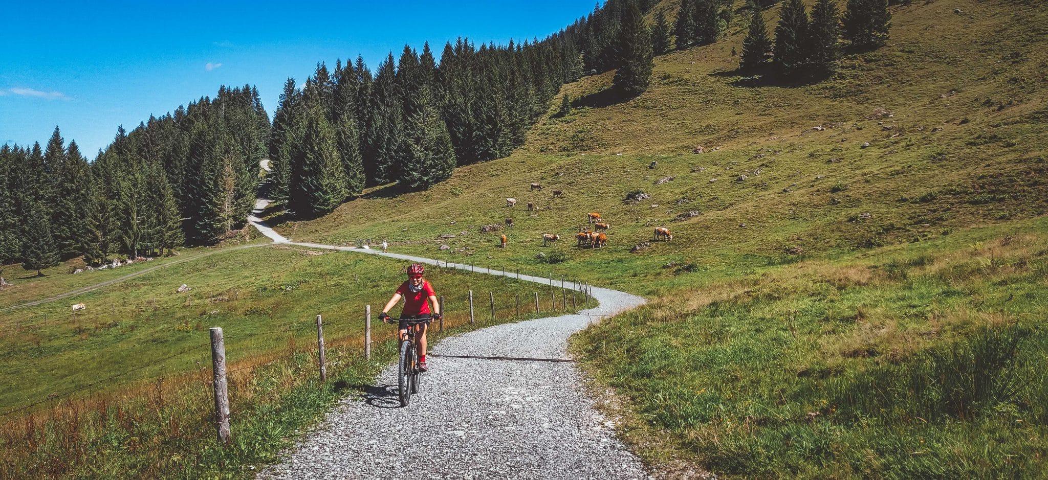 Mountainbike Urlaub in den Allgäuer Alpen - Erfahrungsbericht zum Fahrradurlaub