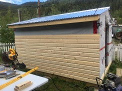 Shed getting siding!