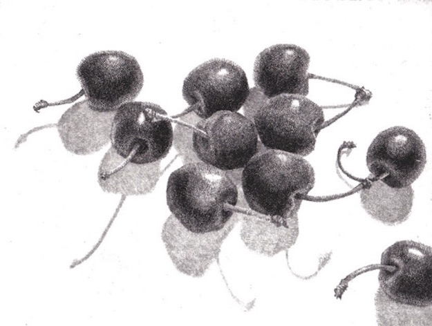Cherries Stems Shadows Etching Prints