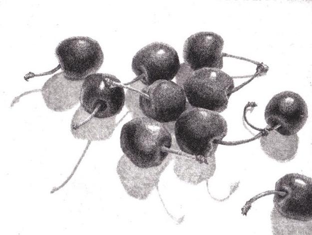 Cherries Stems Shadows Etching Prints