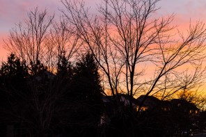cy365-18-sunset