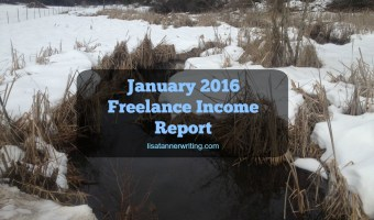 January 2016 Freelance Income Report