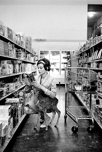 """Audrey Hepburn shopping in Beverly Hills with her pet deer and costar, Pippin, known as """"Ip."""" (1958)"""