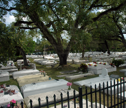 "Michael Jackson's ""Thriller"" video was filmed in the historic Coconut Grove Bahamian Cemetery in Miami, Florida"