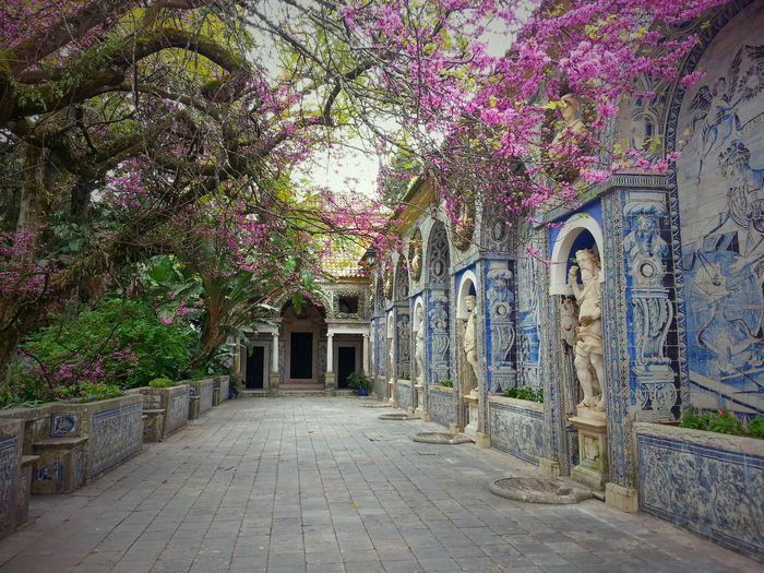 Terrasse palais Fronteira