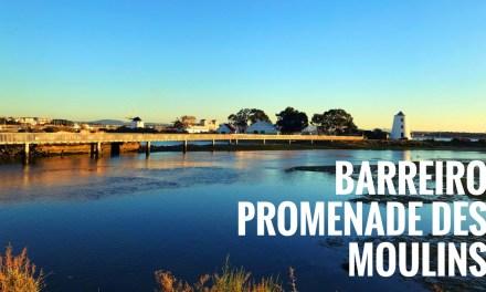 A la découverte des moulins de Barreiro, sur la rive sud du Tage