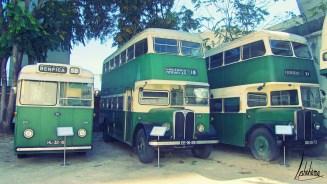 divers bus musée carris