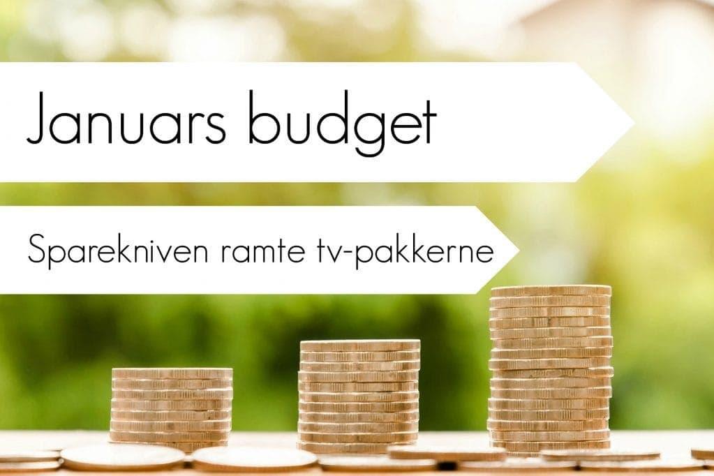 Januars budget; et tilbageblik – Her sparede vi penge