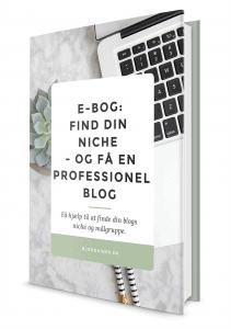 e-bog find din blogs niche