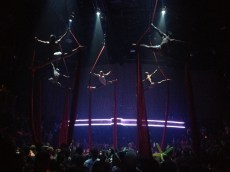 Aerial dancers above the club-goers @ Cocobongo.