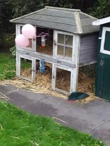 op dierendag versierd konijnenhok Lisette Schrijft