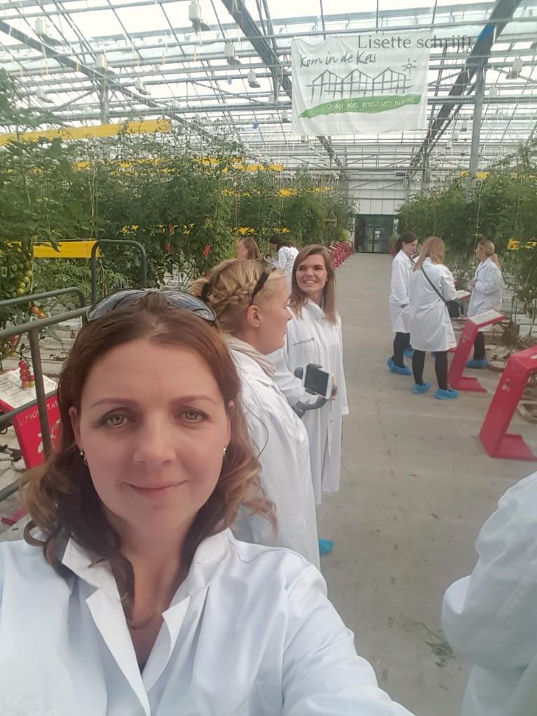bezoek aan tomatoworld in Honselersdijk Lisette Schrijft