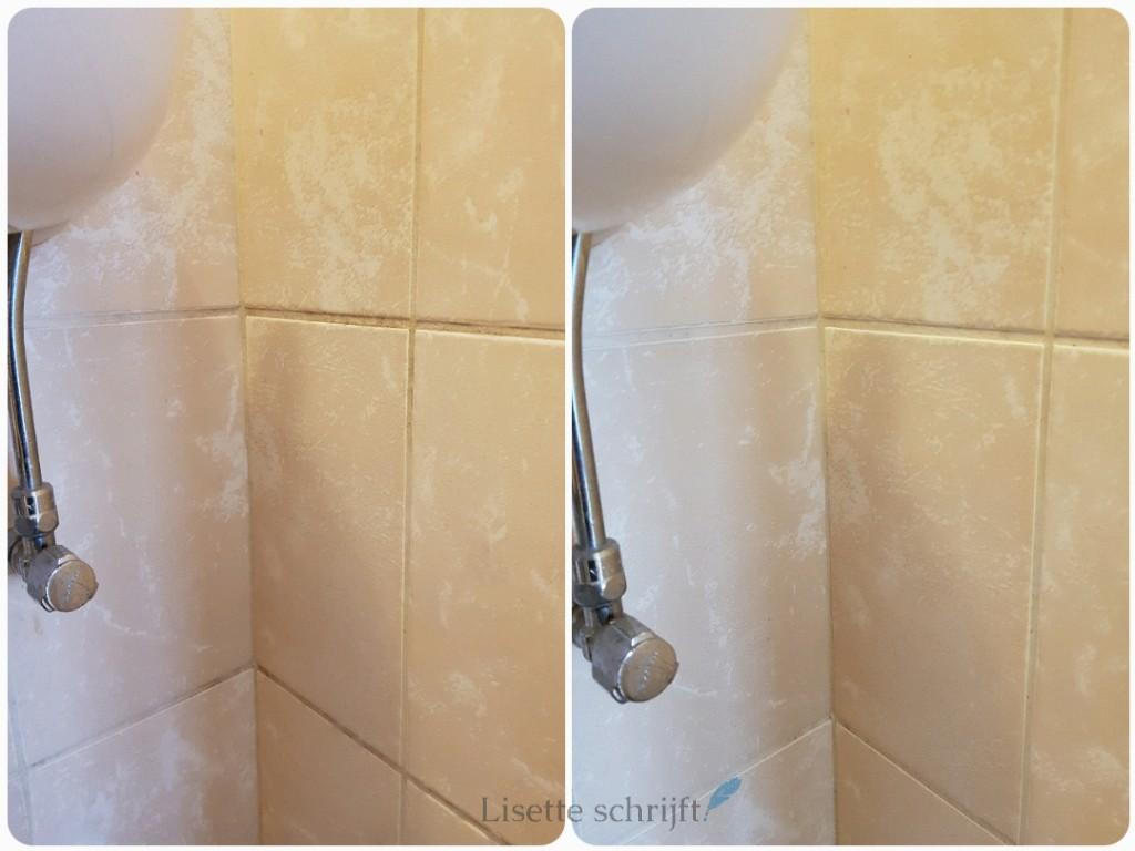 badkamer schoonmaken met Prowin badkamerreiniger Lisette Schrijft