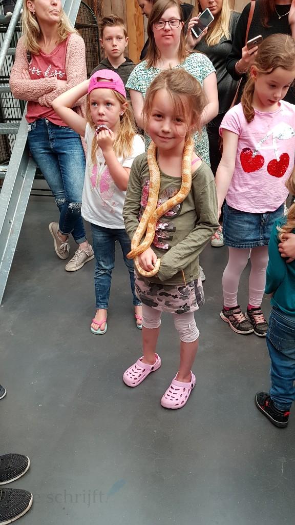 slang vasthouden bij tropical zoo kwadendamme Lisette Schrijft