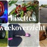 Lisettes Weekoverzicht: weer in het normale ritme