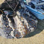 Geplaagd door lieveheersbeestjes op het strand