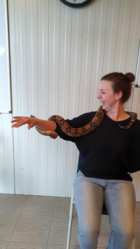 slang vasthouden kinderfeestje reptielen