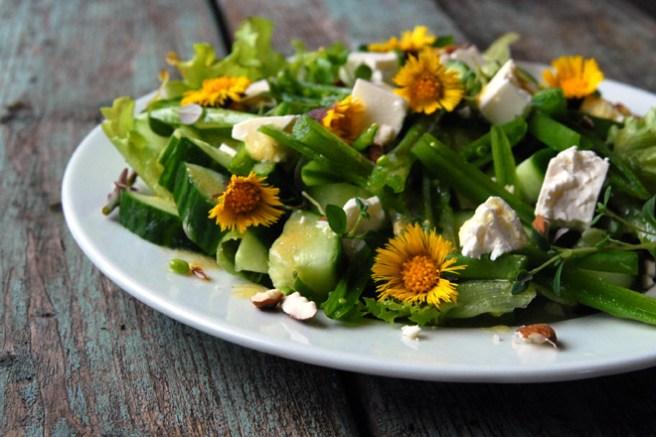 Salaten smaker også godt med brød til. Foto: Lise von Krogh