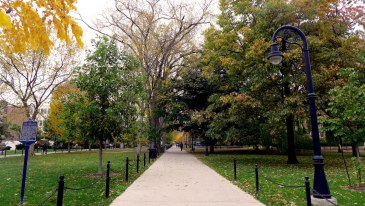 Old college campuses in the fall are the prettiest.