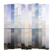 Constant: Vertical (2011)