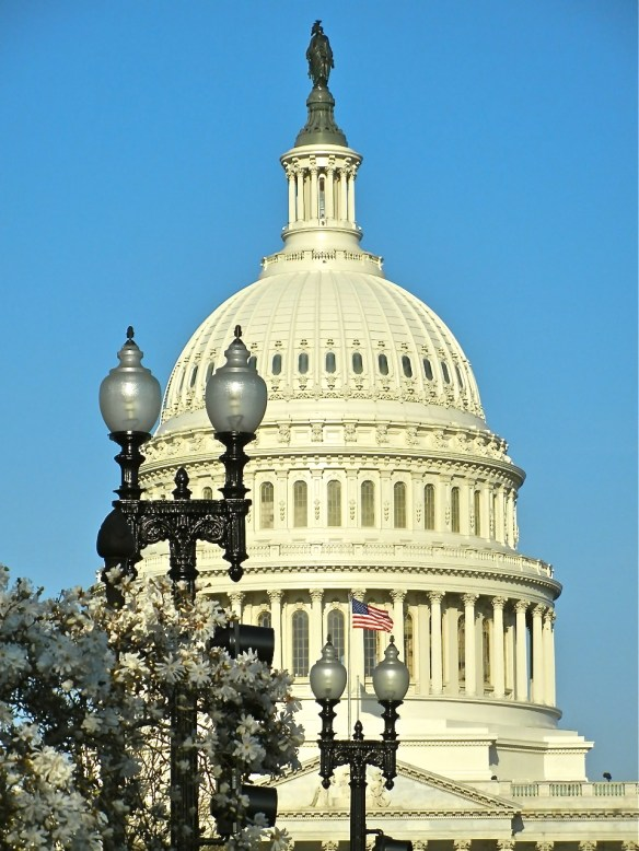 The Capital ... love this view