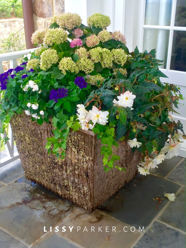 bark planter boxes