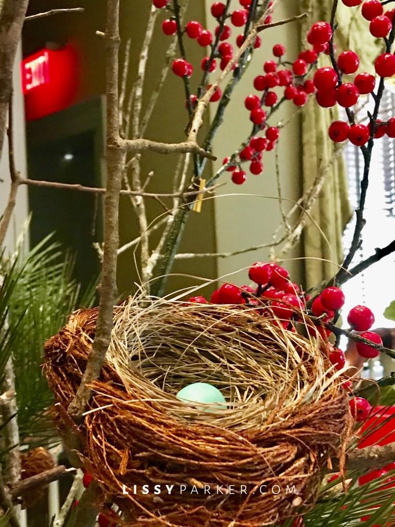 blue egg and nest