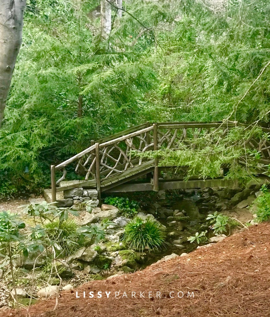 rustic bridge
