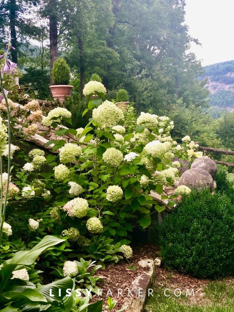 Summer mountain garden