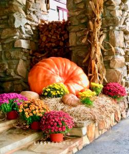 Mountain Top pumpkins