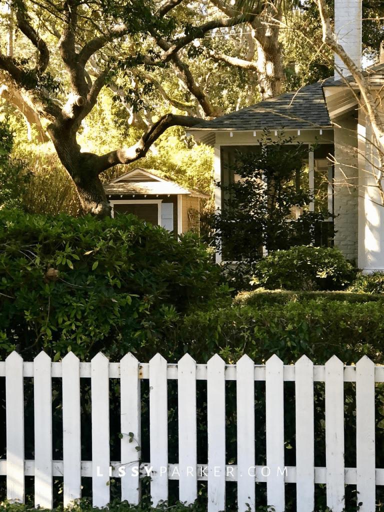 House crush 56-St Simons Island