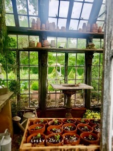 Greenhouse from windows