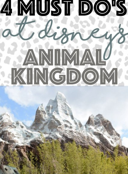 4 Must Do Attractions at Animal Kingdom