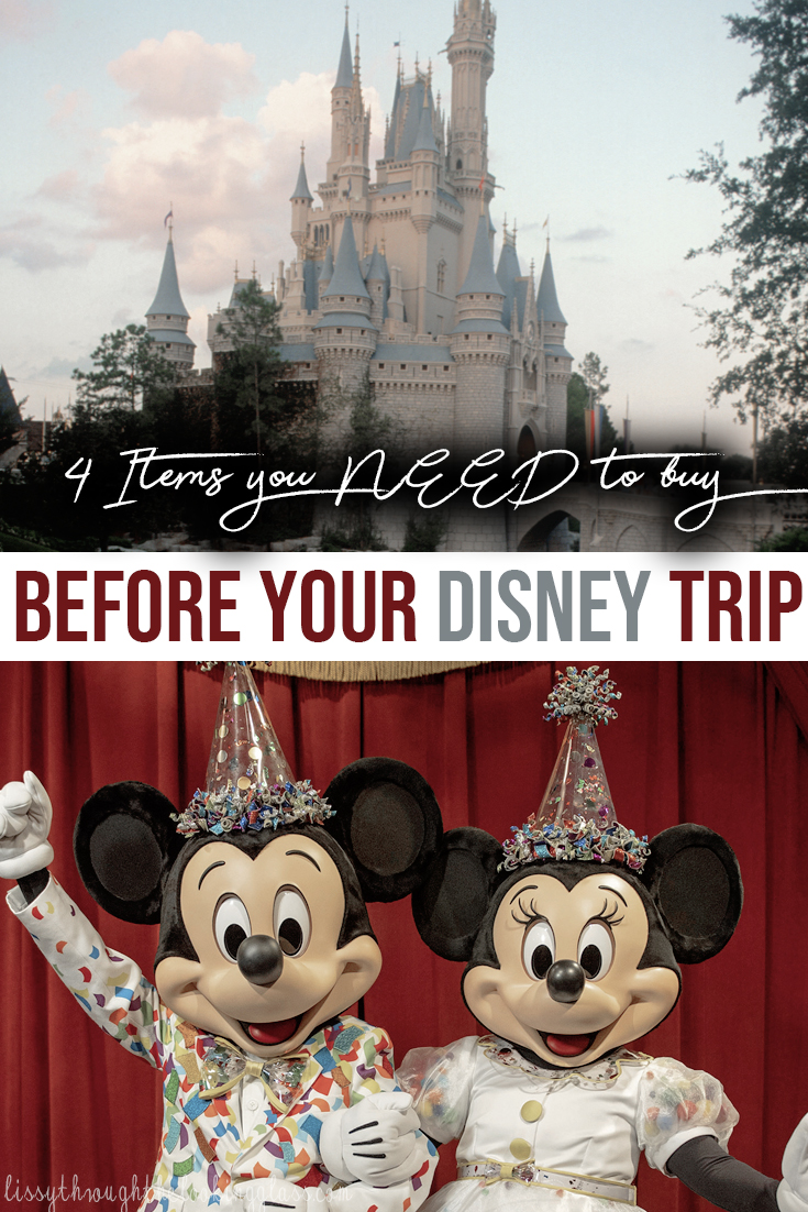 Disney Travel Supplies