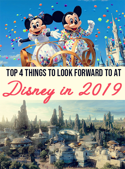 Top 4 Park Updates Coming to Disney in 2019!